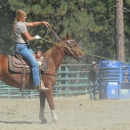 High Performance Mare