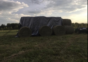 Square and Round Bales
