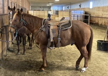 Heel/ranch/breakaway