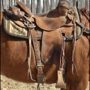 """16"""" Frontier Ranch Saddle"""
