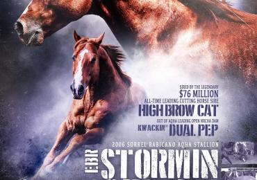 EBR Stormin Norman