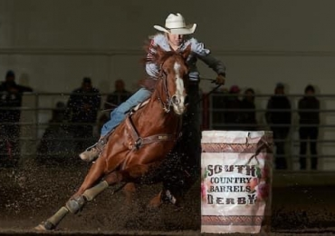 Proven Rodeo Horse