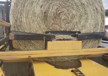 Large Alfalfa/Timothy Silage Bales For Sale
