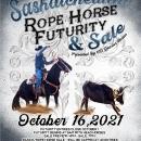 2021 Saskatchewan Rope Horse Futurity & Sale
