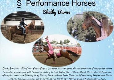 Shelby Burns Performance Horses