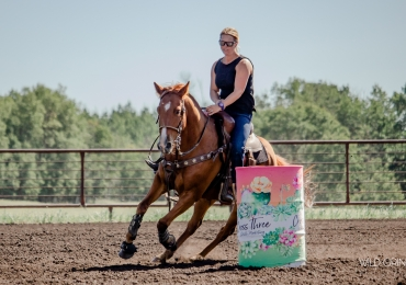 Solid barrel horse. Futurity winner